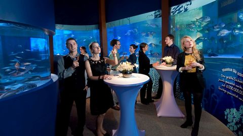 AquaDom & SEA LIFE Berlin - Hochzeitslocations